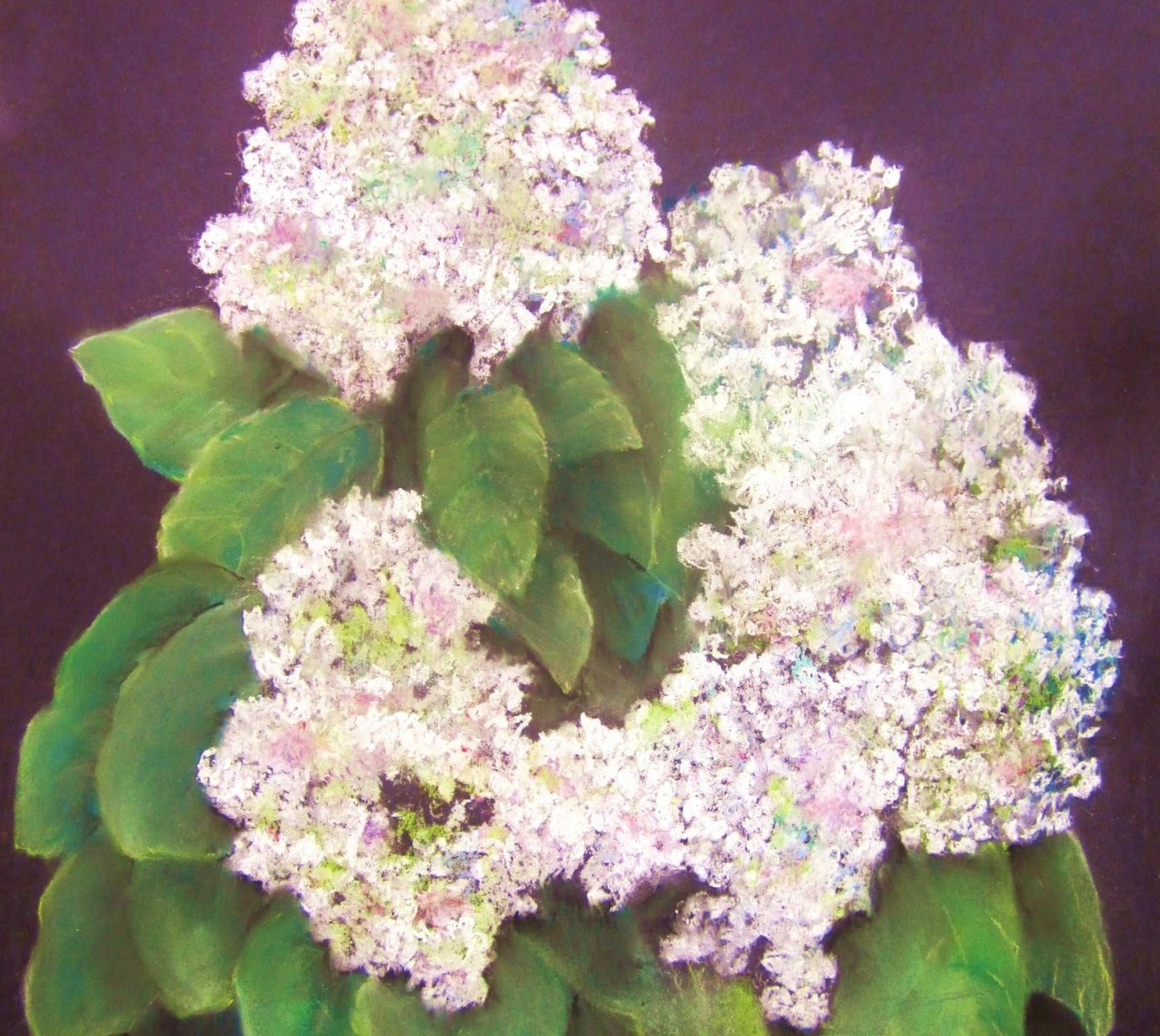 A painting of hydrangeas by High Corbin. Clicking this image will take you to our Current Exhibits page.