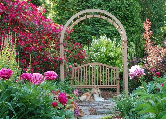 Pink flowers and a bench under an arch with a dog laying in front from the 2017 garden tour
