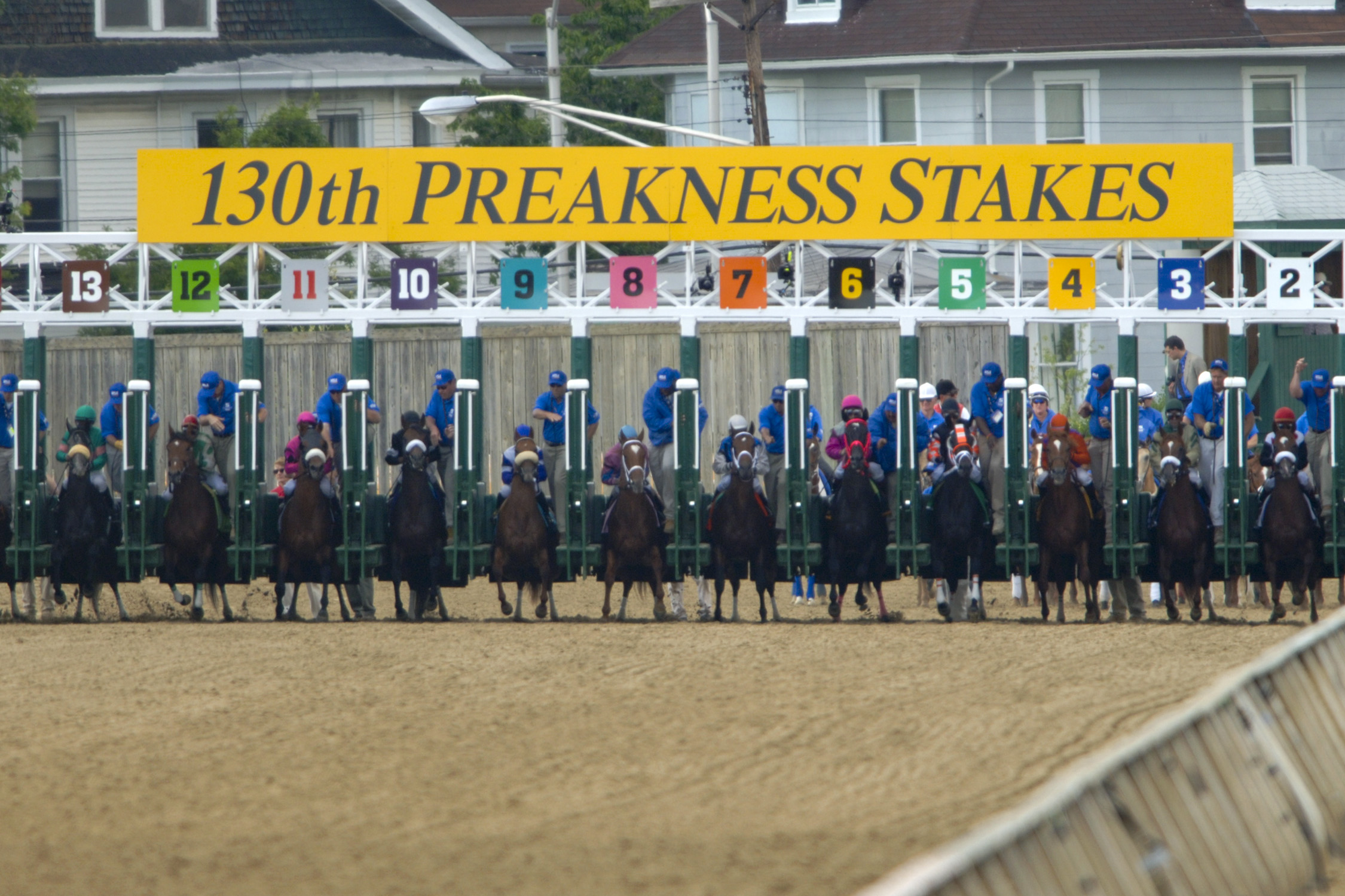 Horses lined up at Preakness