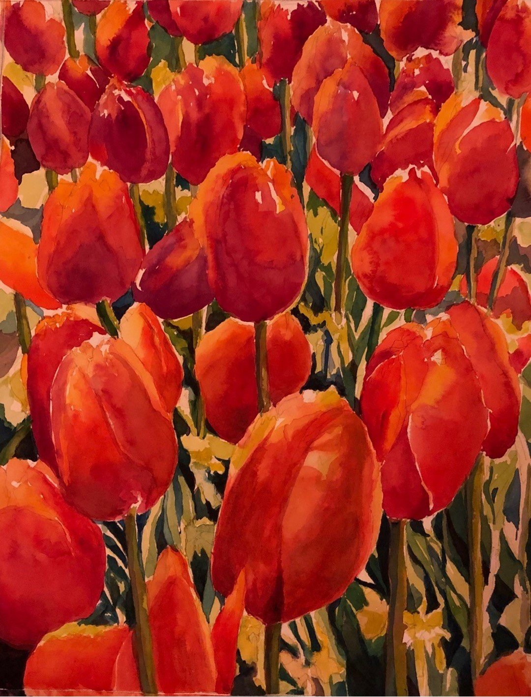 Toni Tui's Red Tulips